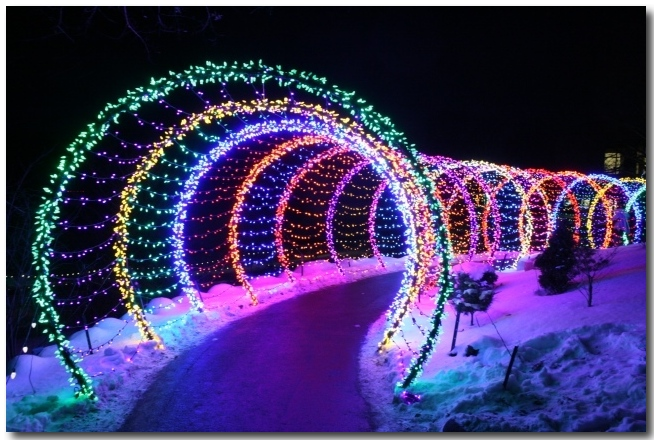 green bay botanical gardens festival of lights